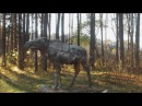 Пропали красивейшие скульптуры Твери памятники в Черногубово Декабрь 2016