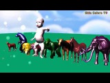Funny Coloring Video for Kids  Learn to Color your Baby with Funny Animals