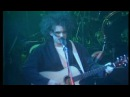 The cure In Between Days live 1985