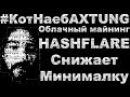 Облачный майнинг HashFlare 13.03.2018 Снижение минимальной суммы на вывод КотНаебAXTUNG