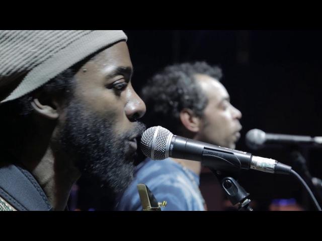 United Vibrations - Shakti (Official Live Music Video)