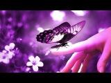 Природа и музыка для души Блюз Саксофон Красота