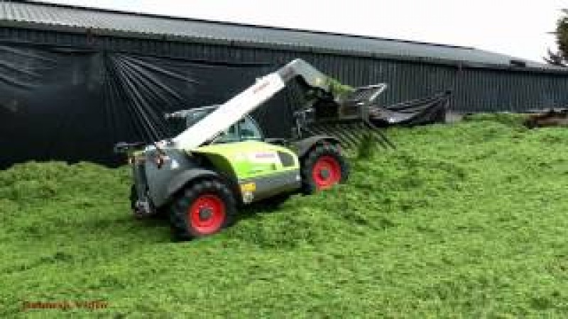 Silaging with Wagon and Pit with Claas.