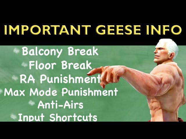 T7   Important Geese Info To Remember
