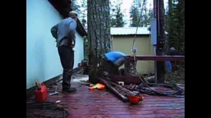 Как срубить дерево ? Мастер класс по валке деревьев в труднодоступных местах.