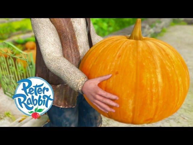 Peter Rabbit - The Giant Pumpkin