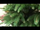 Видеообзор ёлка Президентская 150 см