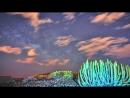 Невероятно красивое видео ночного неба.