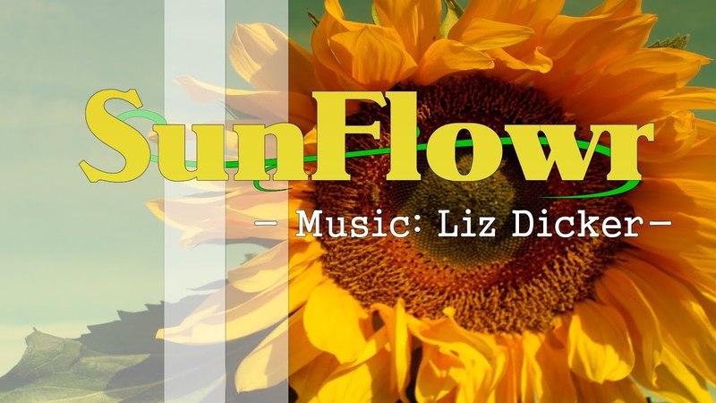 SunFlower HD [Music: Liz Dicker ]