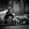 """Фонд развития зоогуманизма """"Добрый Мир"""""""