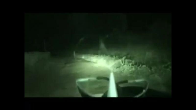 Призрак на дороге в Индии