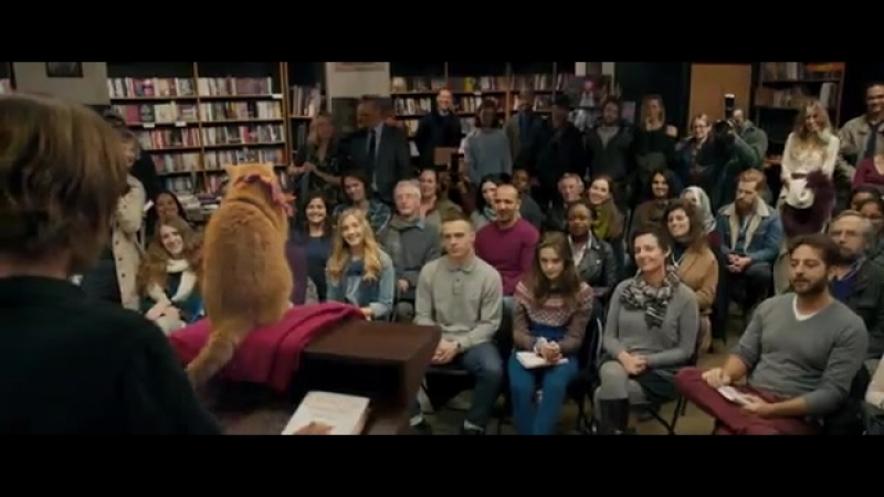 Пушистый друг помог выжить - Уличный кот по кличке Боб (2016) [отрывок _ фрагмен