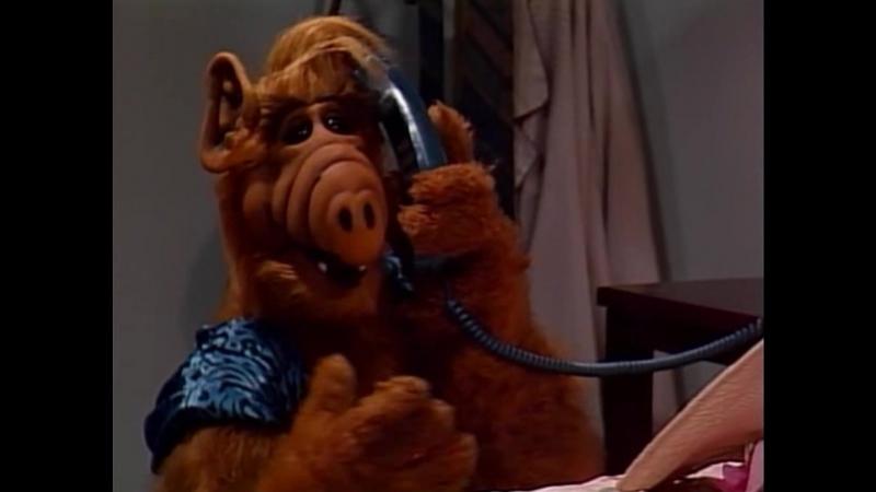 Alf Quote Season 1 Episode 2 Альф и Вилли