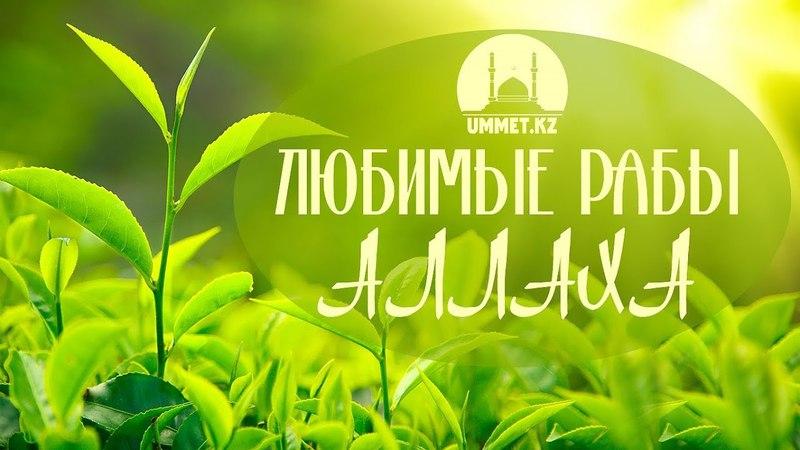 Любимые рабы Аллаха / Даурен Муслимов