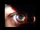 Четыре цвета глаз.(сл. Р. Киплинг)