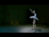 Камиль Сен-Санс. Умирающий лебедь. Ульяна Лопаткина