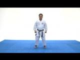 Goju Ryu basics strikes, blocks  kicks