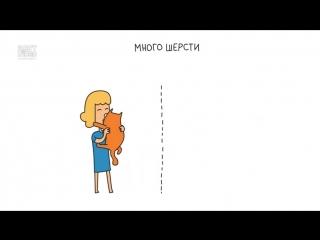 Что общего у мужчин и котов