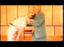 Обучение гипнозу. Семинар по классическому гипнозу 2