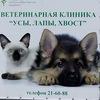 """Ветеринарная клиника ЧГСХА """"УСЫ, ЛАПЫ, ХВОСТ"""""""