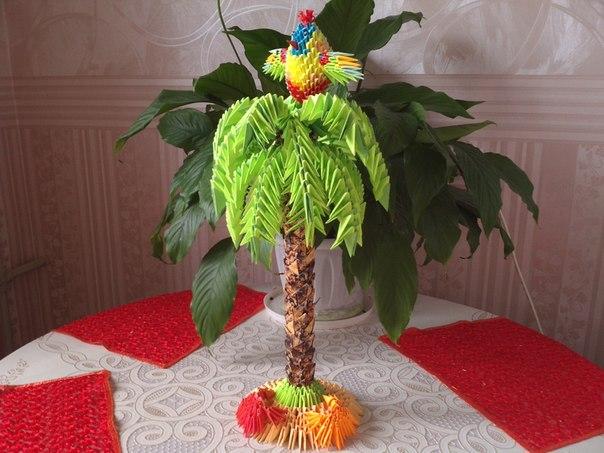 Райская птичка на пальме