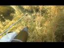 Подводная охота Змееголов дельта река Или Казахстан