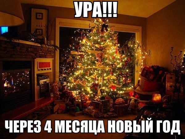 gVedKLoai0A.jpg