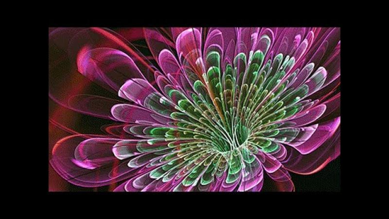 Музыка для души и Неземная красота Цветов мироздания для друзей