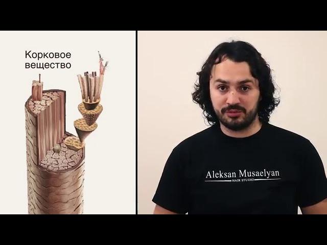 Алексан Мусаелян Колористика Урок№3 Координация цвета фон осветления
