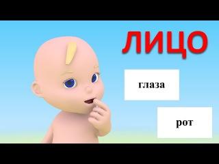 Учим части тела. Учимся с Масиком: лицо. Развивающий мультфильм от 12 до 36 месяцев