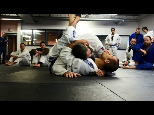 Ryron Gracie Surviving, Defending, and Escaping the Sidemount