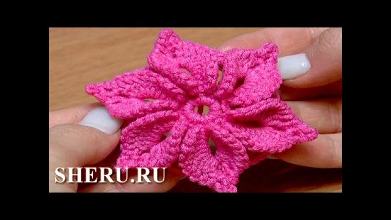 Crochet 3D Flower Pattern Урок 46 Вязаный Цветок с лепестками украшенными пико » Freewka.com - Смотреть онлайн в хорощем качестве