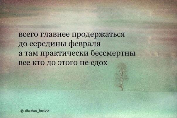 https://pp.vk.me/c621619/v621619136/100a8/wQqn5e7fJJw.jpg