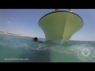 Лохматый рыбак на лобстеров