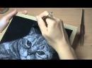 Мастер класс по рисованию тополиным пухом Poplar Fluff Drawing