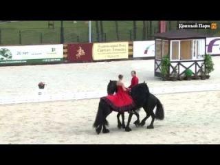 Libertango - Танго Свободы на лошадях породы Фриз