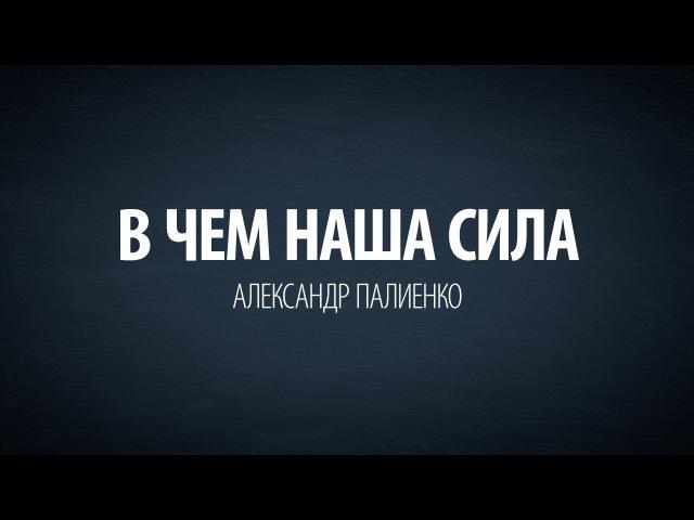 В чем наша сила Александр Палиенко