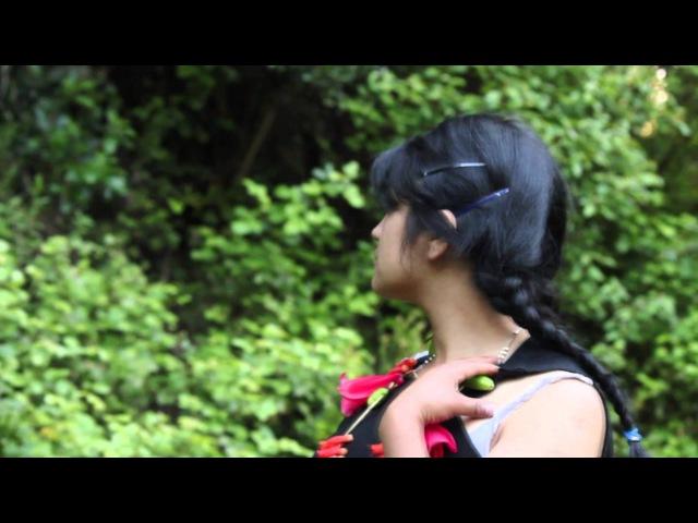 Canción Mapuche Millaray
