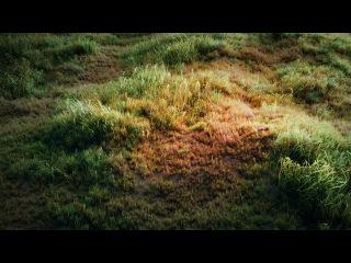 Blender Tutorial: How to make a grass field?