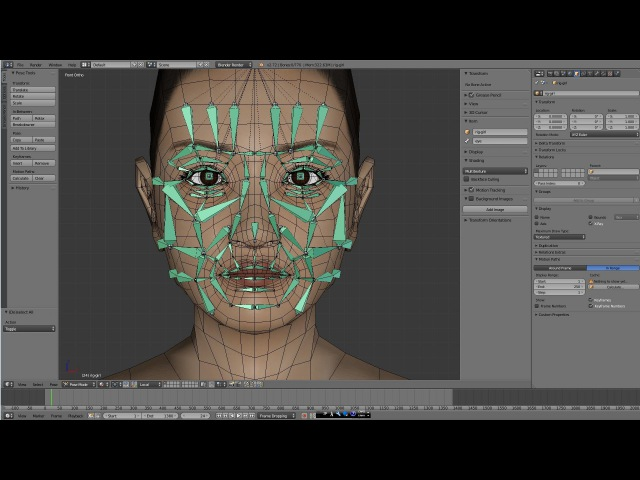 Face Rig - by Blender(3DCG)