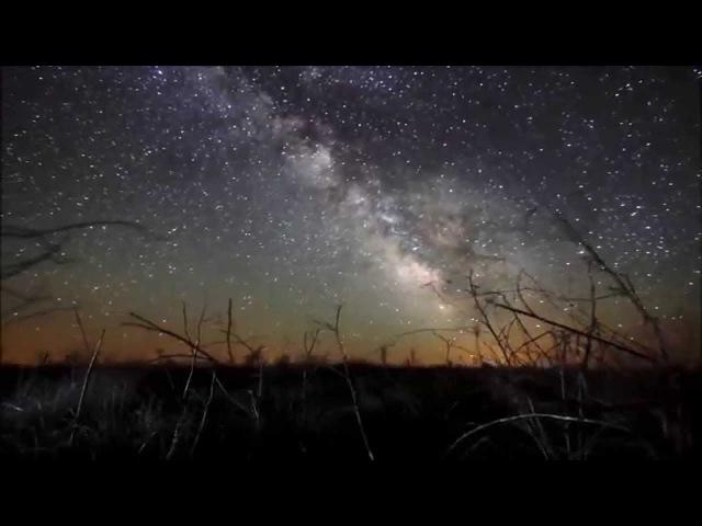 Carbon Based Lifeforms MOS 6581 Album Version HD