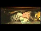 Самый короткий фильм ужасов — 1 минута абсолютного страха