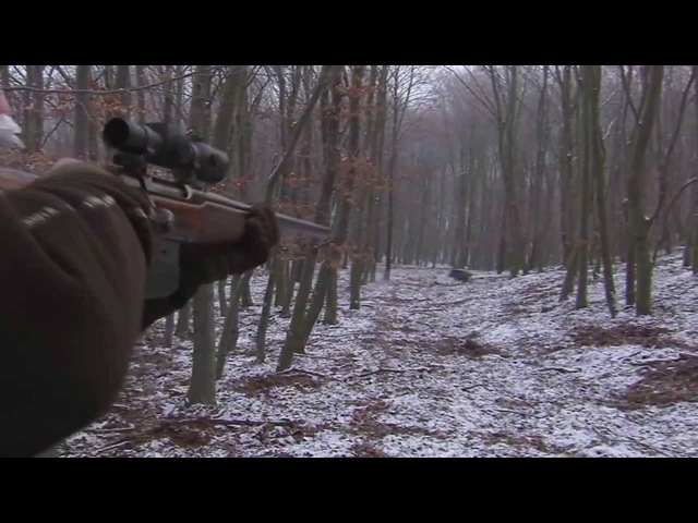 Franz Albrecht Oettingen Spielberg Wild Boar hunting