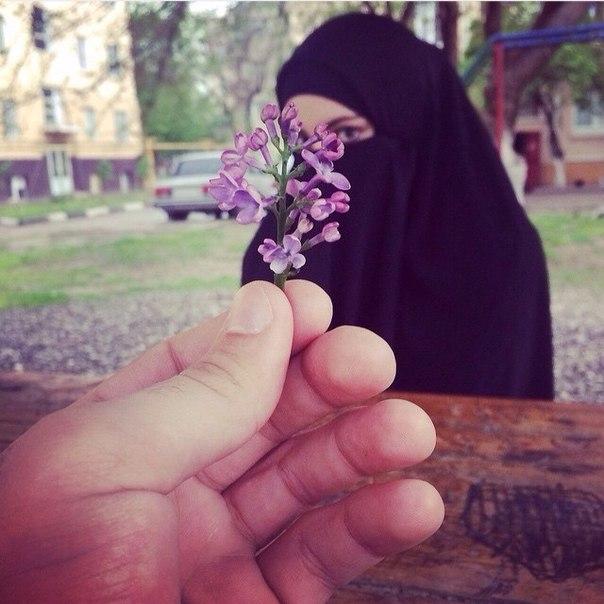 v-islame-intim
