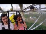 Кот - непрошенный пассажир самолёта