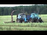 Заготовка силос тракторами  МТЗ 82,82.1 с прицепным комбайном ROSTSELMASH