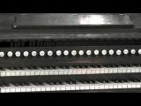 Georges Bizet Ronde Turque Claudio Brizi Harmonium C