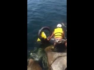 Motosiklet ile Denize Atlama (Efe İsa Çakır)