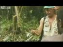 Племя первый раз видит белого человека  1976 год  Папуа Новая Гвинея  Переполняет десятками эмоций