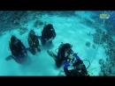 Open Water Diver SNSI - Scuba Nr. 1